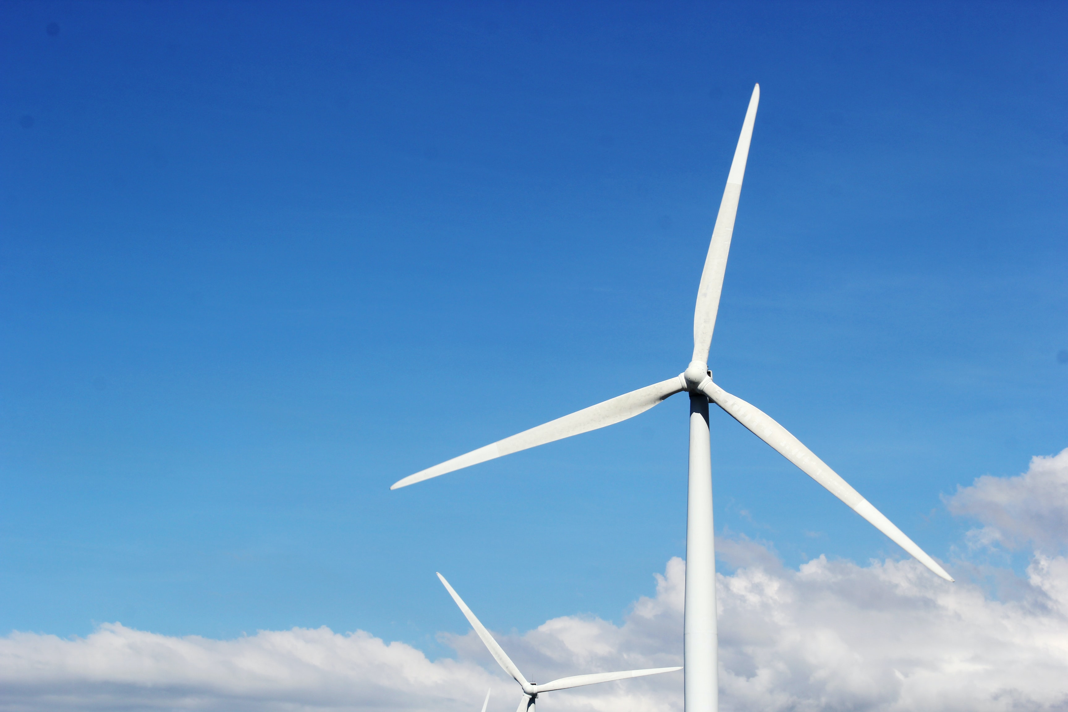 LYNDDAHL invests in green energy